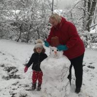 Sniegavīru sasaukšanās