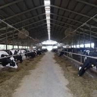 Lauksaimniecība ir perspektīva nozare!