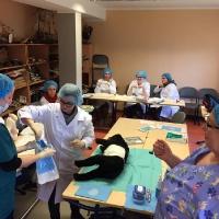 Sākusies stratēģiskās partnerības projekta veterinārmedicīnas jomā testēšana